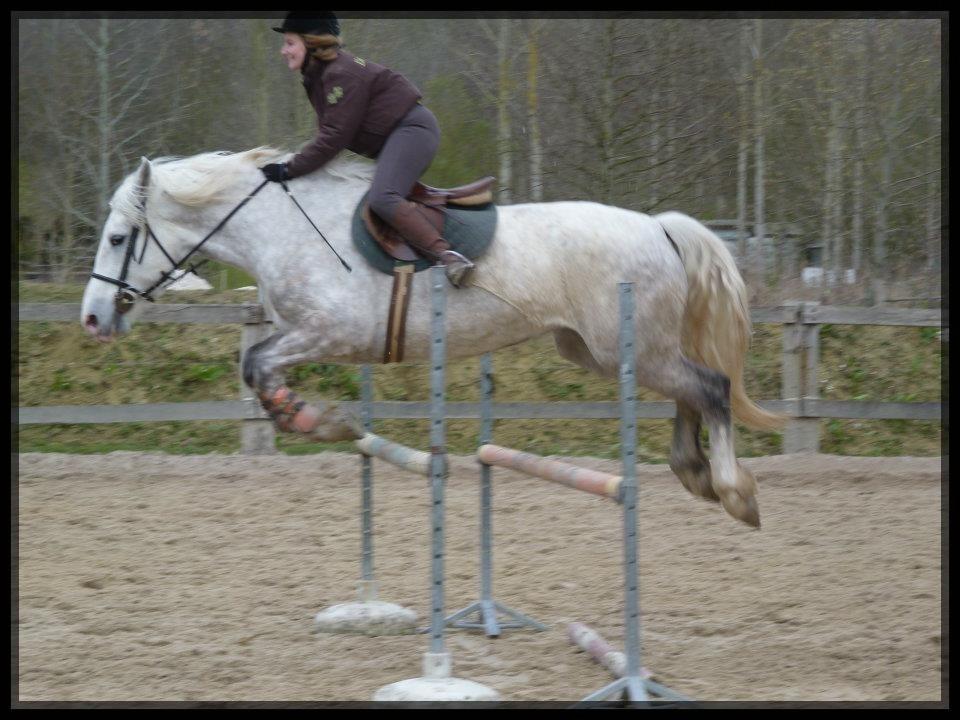 Elodie cheval 4